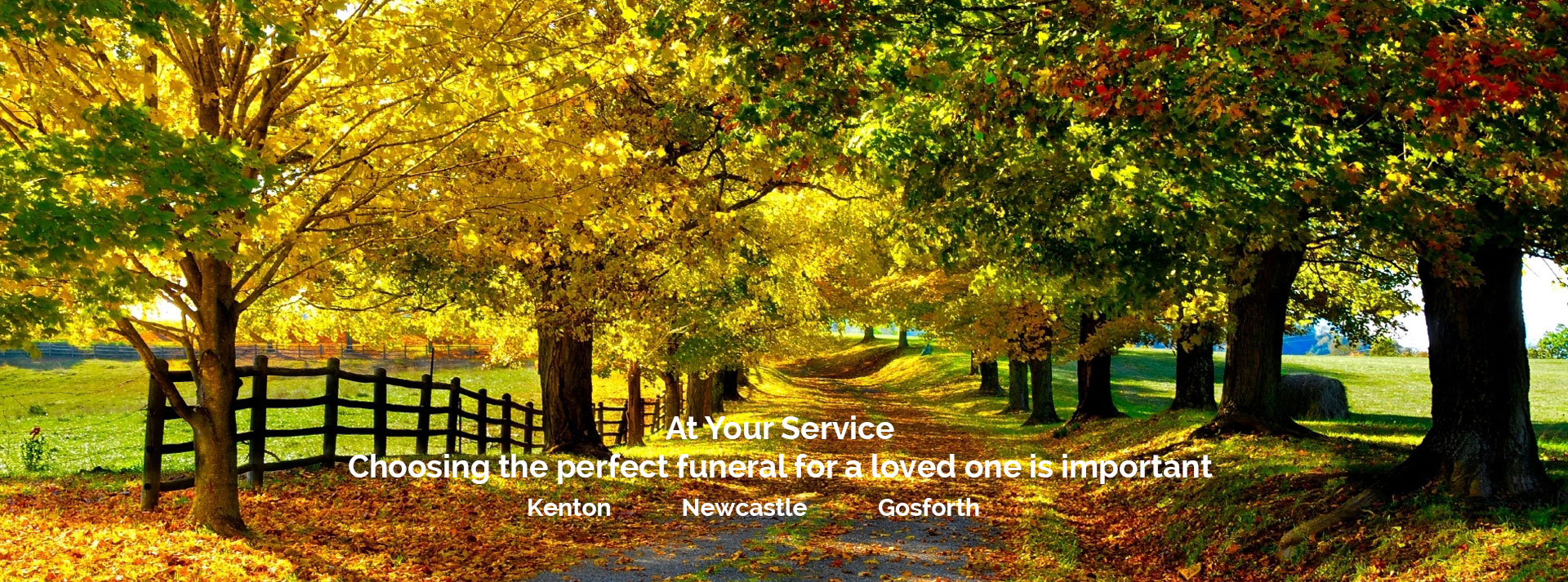 Funeral directors and funeral services in Newcastle, Kenton, Gosforth, Kingston Park, Great Park, Benton, Jesmond, Blakelaw, North Tyneside, Northumberland and Gateshead. Funeral advice on cremations, burials, home or venue services, coffins and flower arrangements.